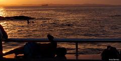 olhando [1] (Anita Barreto) Tags: brasil mar pessoas prdosol bahia salvador silhueta humait pontadohumait