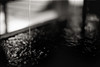 1+1=1 (TommyOshima) Tags: water monochrome 50mm shrine sacred rodinal element f12 selfdeveloped pentaxlx iso25 apocrypha tanatos orwopan 幻視展 タナトス 30℃