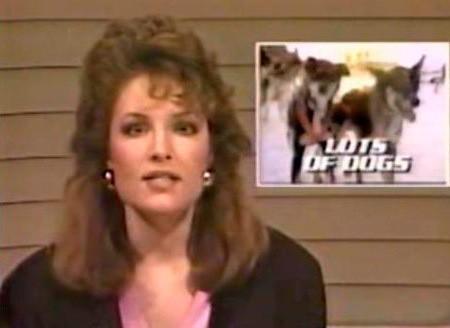 Sarah Palin, Sportscaster