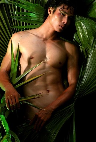 ... an international male model and Mr. Gay Universe 2008.