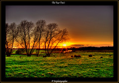 The Four Tree's (Irishphotographer) Tags: ireland sunset art sunshine sunrise owl sureal irishart kinkade beautifulireland colorphotoaward besthdr imagesofireland colourartaward picturesofireland pentaxk20d kimshatwell irishphotographerkimshatwellireland irishcalender irishcalender09 calendarofireland breathtakingphotosofnature beautifulirelandcalander wwwdoublevisionimageswebscom