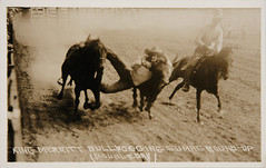f_rppc_rodeo (ricksoloway) Tags: rodeo photohistory vintagephotos foundphotos photographica thewest rppc realphotopostcard phototrouvee