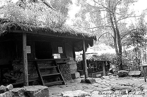 Luccong (Upper Class Kalinga Hut) circa 1923