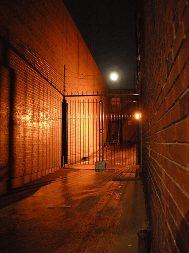 A Moonlit Alley