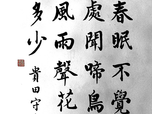 """zen_graphia_58 • <a style=""""font-size:0.8em;"""" href=""""http://www.flickr.com/photos/30735181@N00/3118412354/"""" target=""""_blank"""">View on Flickr</a>"""