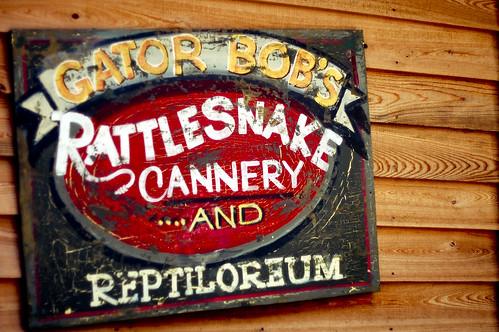 Gator Bob's