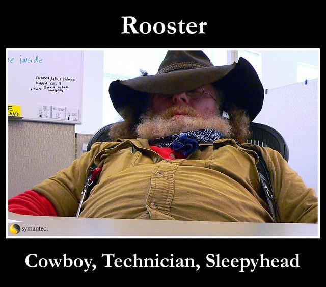 Rooster Sleepyhead