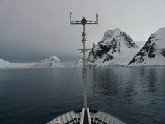 Navegant (pijus) Tags: sunset sea sky snow cold ice animals yellow fauna atardecer mar gentoo loneliness south nieve amarillo cielo fred soledad fro continent far lejos hielo icebergs southpole antarctic continente professormolchanov antarcticpeninsula petermannisland polosur antarcticislands antrtida whitecontinent polsud