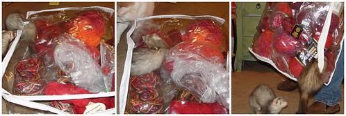 ferrets in stash
