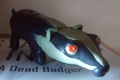 A Dead Badger