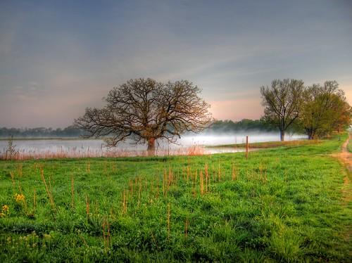 Nygren Wetlands