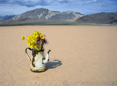 Optimism (jrtce1) Tags: california art racetrack photography photo desert philosophy playa zen teapot motivation deathvalley optimism symbolism racetrackplaya wordsofwisdom coffepot healingwords motivationalquotes theunforgettablepictures fbdg jrtce1 surrealdesertart motivationalwords