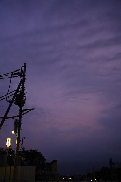 西側の夕闇紫