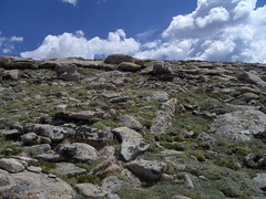 HPIM1204 (jimvickers) Tags: colorado elk rockymountainnationalpark continentaldivide bouldercreekpath summer2008