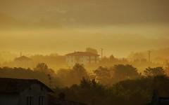 07/08/2008 h06:45 cenni d'autunno (Marsala Florio) Tags: italy fog sunrise italia alba nebbia brianza lombardia bestflickrphotography