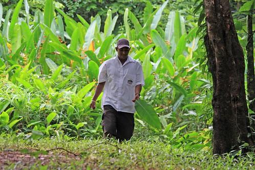 Costa Rica - Día 3 (221)