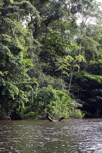 Costa Rica - Día 3 (273)