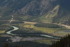 Bow River Snakes (peanutian) Tags: banff bowriver sulphurmountain