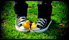 Kissing Ducks (jami_lee) Tags: duck ducks rubber converse myfavoritethings challengeyouwinner thechallengefactory
