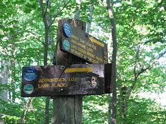 Blue trail sign, LOJ, Marcy Dam, and Mt. Marcy (Shady Corner Curve, New York, United States) Photo