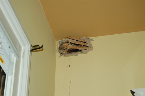 house damage (70).JPG