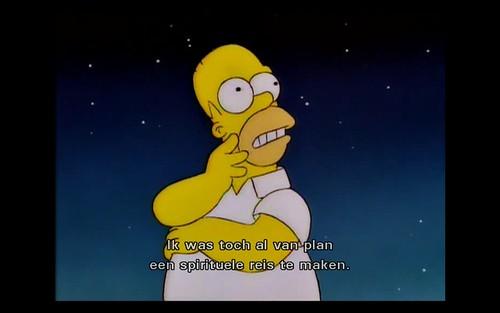 El Viaje Misterioso de Nuestro Homer