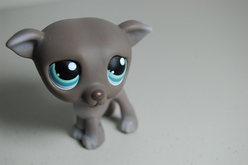 The only LPS dog I dearly love. by thatlunagirl.