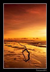 Cardurnock. (numanoid69) Tags: uk sunset england seascape beach coast seaside sand driftwood shore cumbria coastline solwayfirth almostanything cardurnock prideofengland