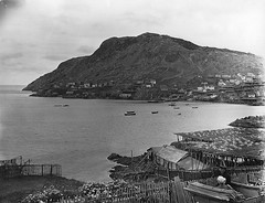 Portugal Cove, NL, 1908 (Muse McCord Museum) Tags: flowers houses people fish canada newfoundland boats harbour hill fences stages pastures nl tickle flakes nfld drying dories touringcar mccordmuseum portugalcove musemccord fishingrooms