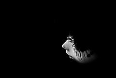 NotreDamedeLOmbre (  Pounkie  ) Tags: portrait bw noir pullip nero profil noirblanc pullipcustom pullipnero noprenn notredamedelombre
