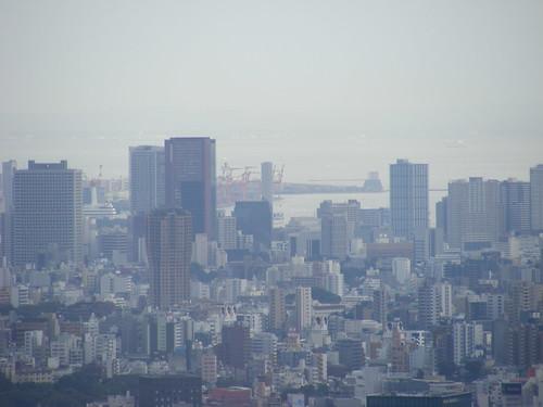 2008_1012shinjuku0086