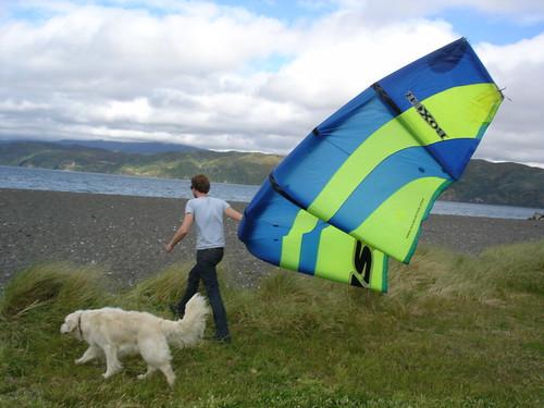 Matt Chernishov with his kite and dog in Wellington, New Zealand