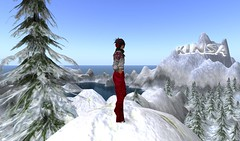 At KINSA in SL (Avatrian) Tags: winter snow toronto canada playground virtual mapletree presence ngo kinsa nonprofit metaverse insl avatrian insecondlife kidsinternetsafetyalliance