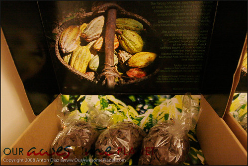 Heavenly Chocolates-6