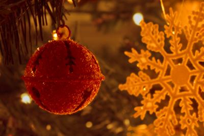 ornament DSC02960