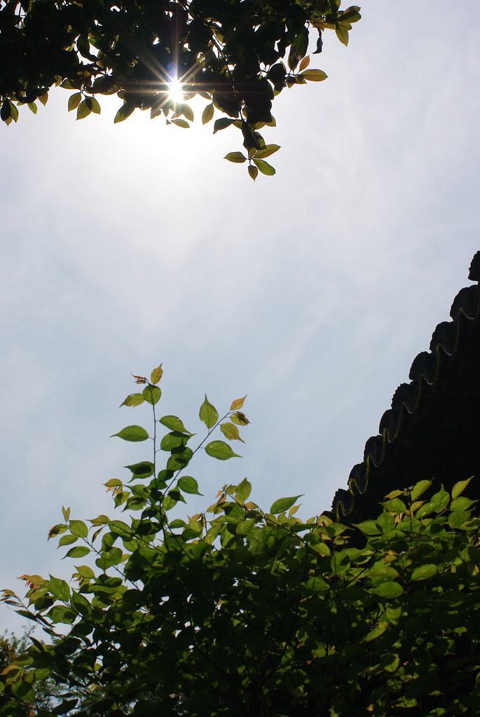 [景點][上海]嘉定 古猗園...29P