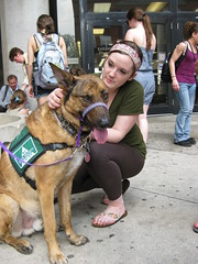 dogs finalsspring2011