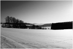 Winter IV (gato-gato-gato) Tags: schnee winter snow landscape 2008 landschaft schwarzwald blackforest fds freudenstadt tokina1224mmf40 canoneos400d gatogatogato gatogatogatoch