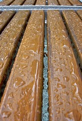 Wet Bench (zykloid) Tags: water rain germany bench drops europe ulm badenwuerttemberg