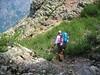 Après la plate-forme versant Scaffone : le couloir de descente dans les aulnes