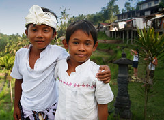 Bali – Rice terrace