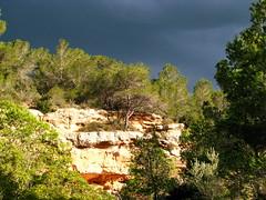 Uferfelsen ... (Martin Volpert) Tags: españa rock spain catalonia catalunya espagne roca spanien roche felsen catalogna santescreus katalonien catalogne lametllademar mavo43