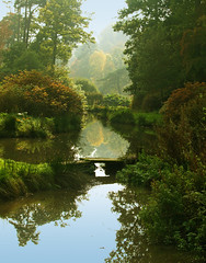Leonardslee Gardens in Autumn (Anguskirk) Tags: uk bridge autumn trees england mist lake reflection green fall nature water fog gardens woodland landscape sussex footbridge eu leonardslee loder favoritegarden