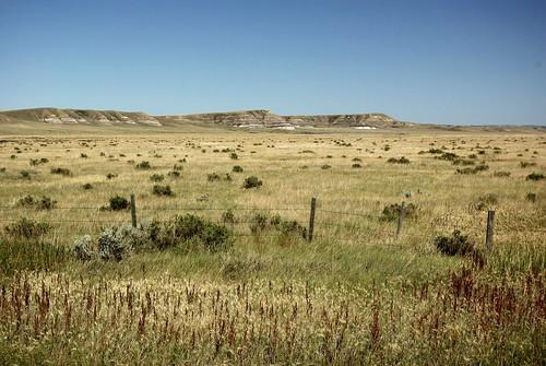 Big Muddy Valley