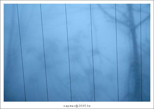 DSC_9542.jpg