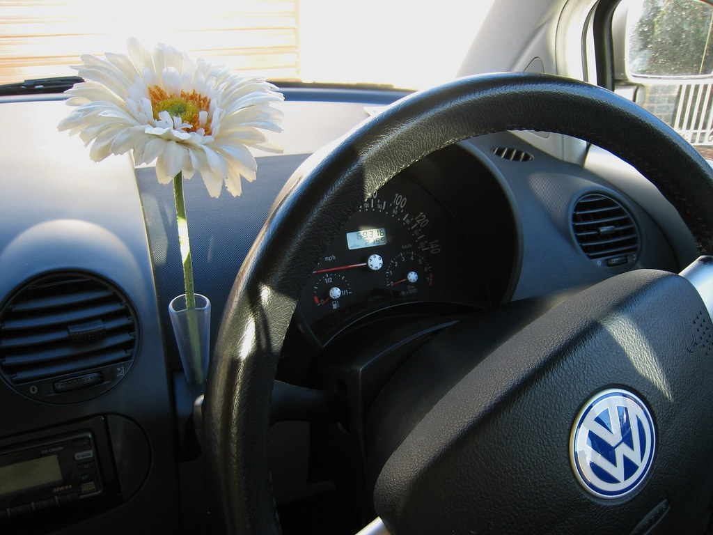 The worlds best photos of vase and volkswagen flickr hive mind inside ben the beetle daisy beetle girl tags new flower vw volkswagen ben reviewsmspy
