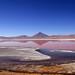 Landscape Bolivia:Laguna colorada