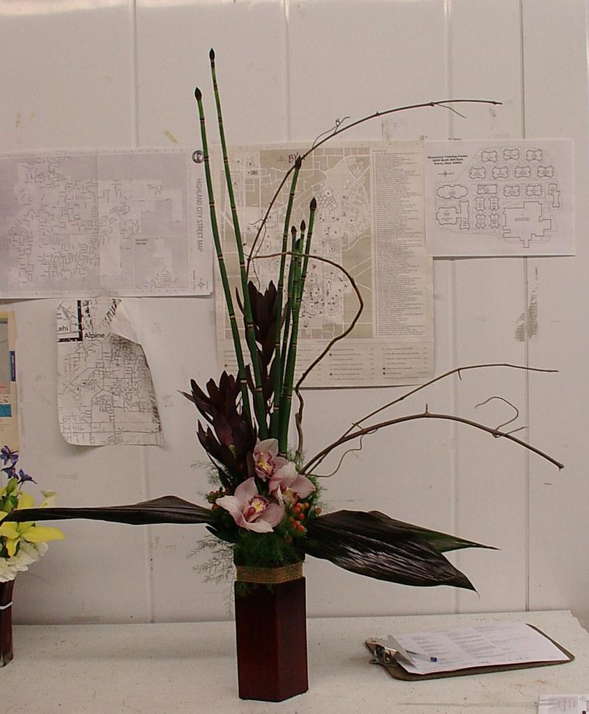 3  orchids