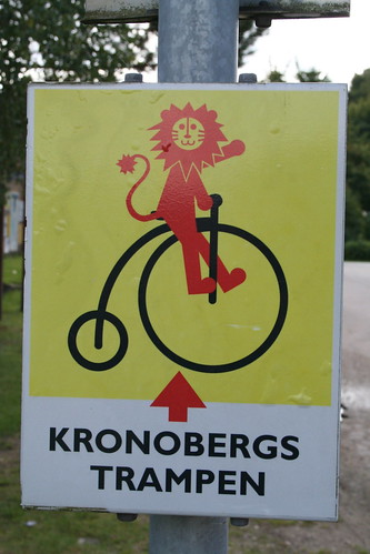 """Beware, friendly lions on bike crossing!"""