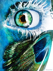 Ice Butterfly (_Music_is_Life_) Tags: eye ice beautiful look butterfly amazing eyes colorful awesome deep fantasy sight tear georgeous